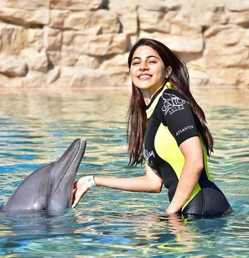 Nikki Tamboli Biography The Celebrity Face With Dolphin